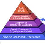 Webinar: Your Patient or Client Has a High Aces Score: What Next?
